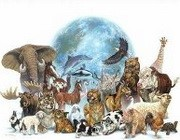 Всесвітній день захисту тварин
