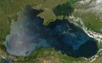 Міжнародний День Чорного моря